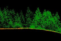 Vegetation from LiDAR Point Cloud